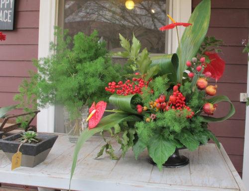 Aprovechemos mercado y jardín, últimos frutos antes de la primavera